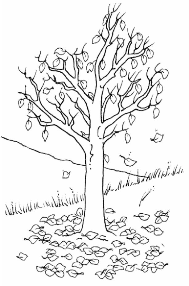 Actividad de tutoría. El árbol de las cualidades