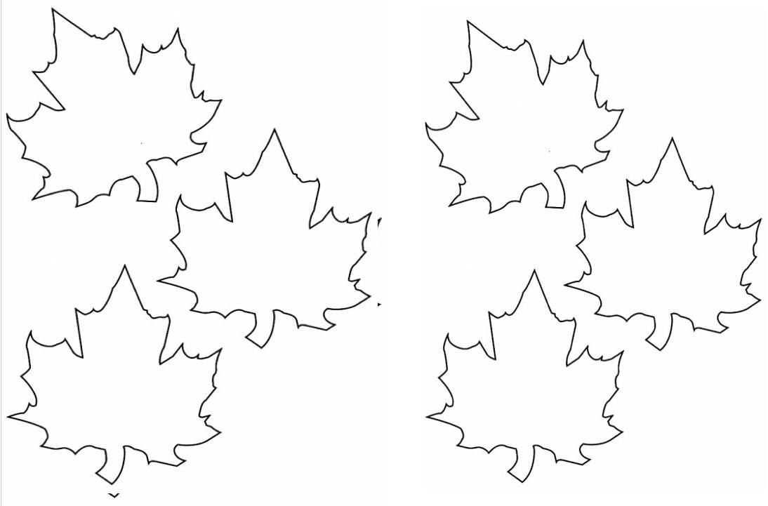 K hojas arboles colouring pages for Arboles de hoja caduca